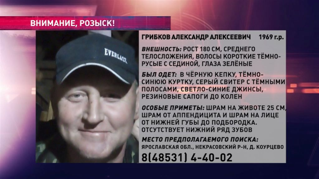 В Ярославской области ищут Александра Грибкова
