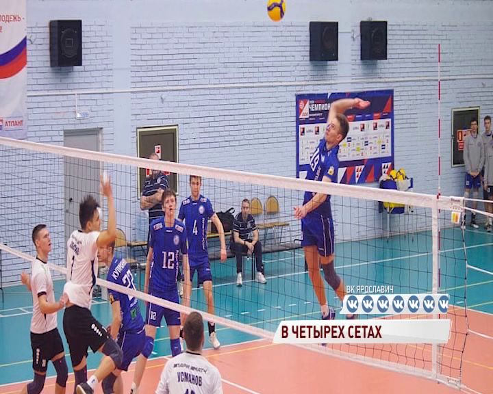 Волейболисты «Ярославских медведей» обыграли «Динамо-ЛО-2»