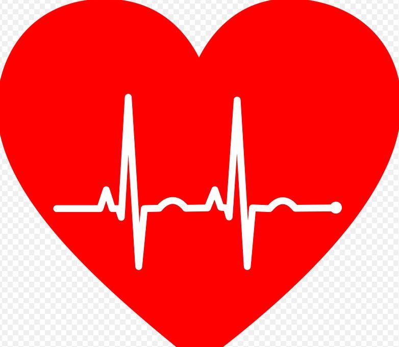 Ярославцы могут бесплатно контролировать здоровье сердца через приложение «МТС 120/80»
