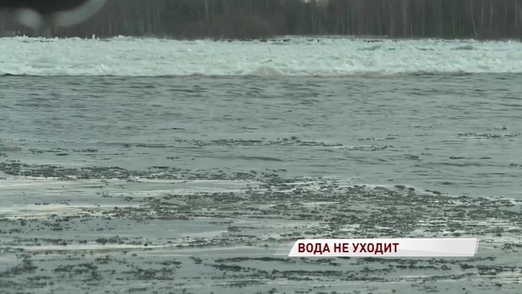 Ледяной затор на границе двух районов не позволяет опуститься уровню воды в Волге - МЧС