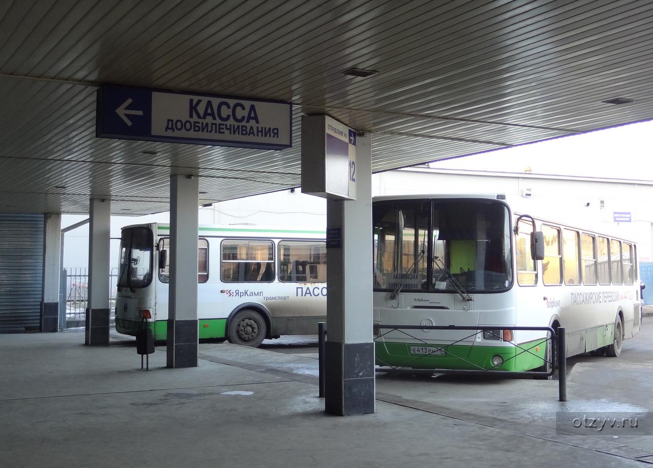 Жители региона могут направить предложения по работе общественного транспорта в мессенджер
