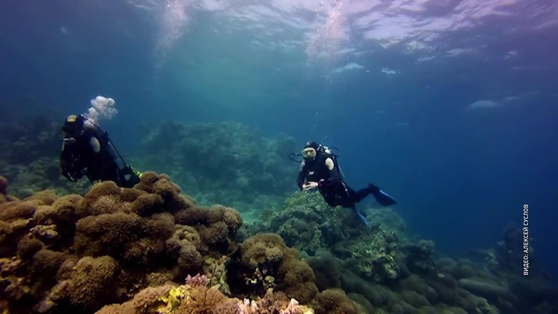 Риск за каждым снимком: в Угличе открылась выставка подводных фотографий