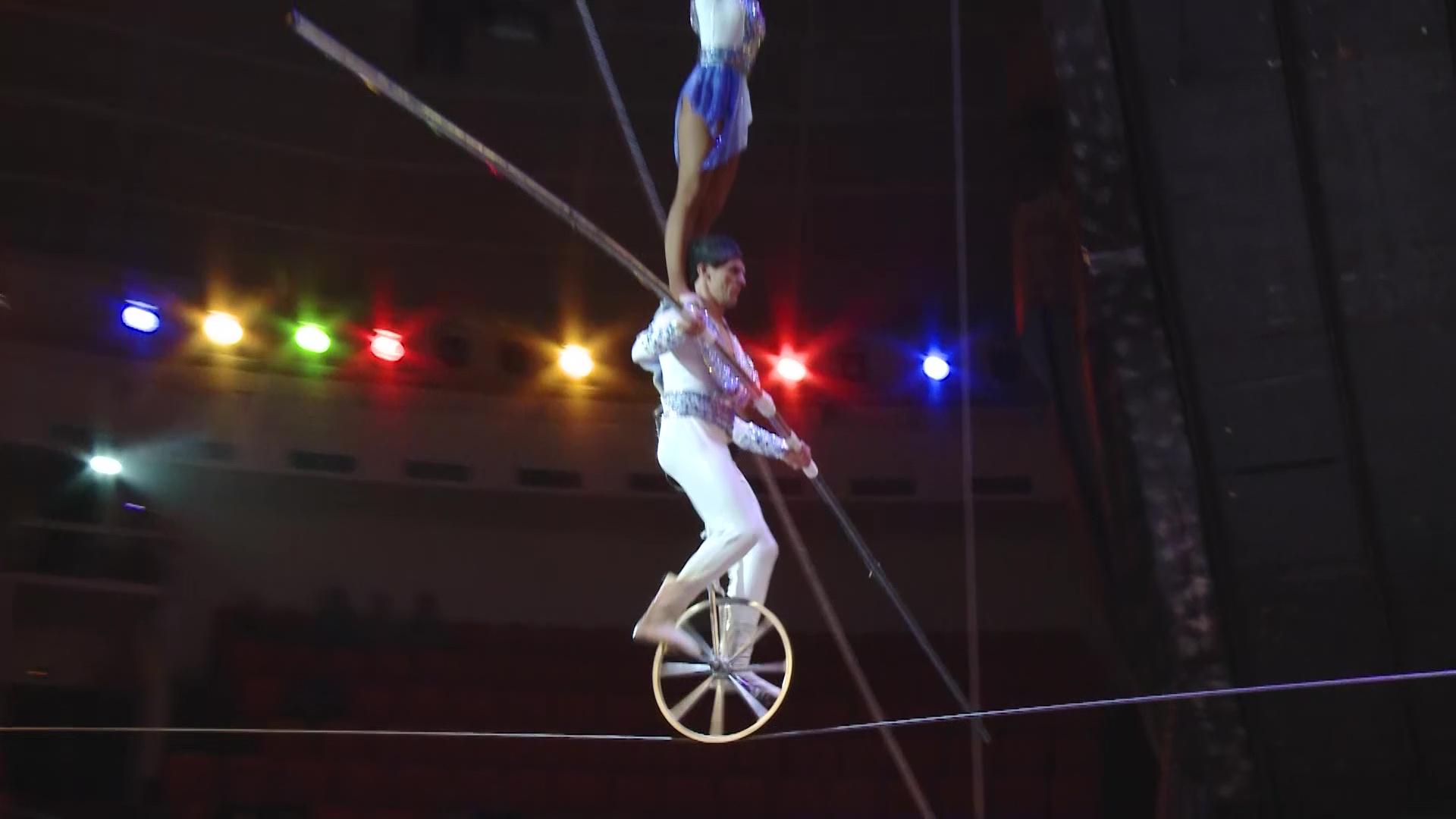 Ярославцев удивляют новой цирковой программой