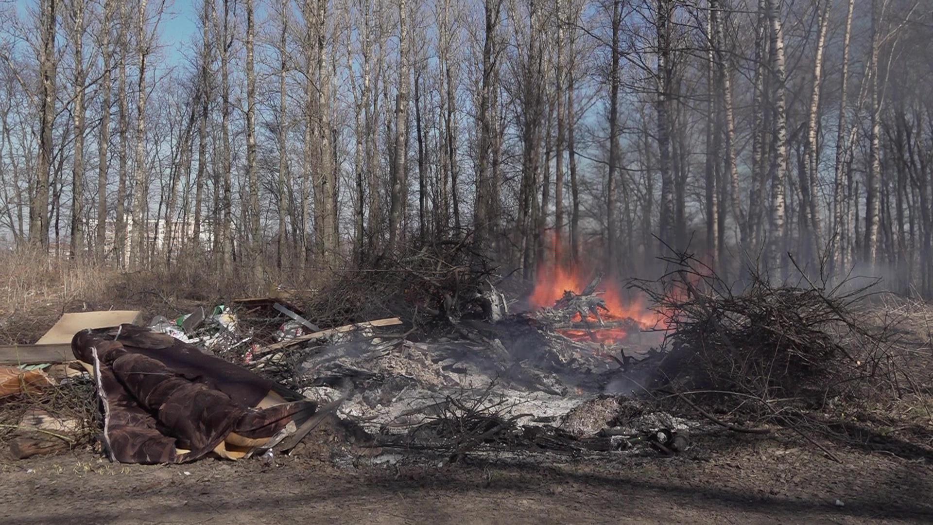 В регионе увеличилось число пожаров из-за пала сухой травы