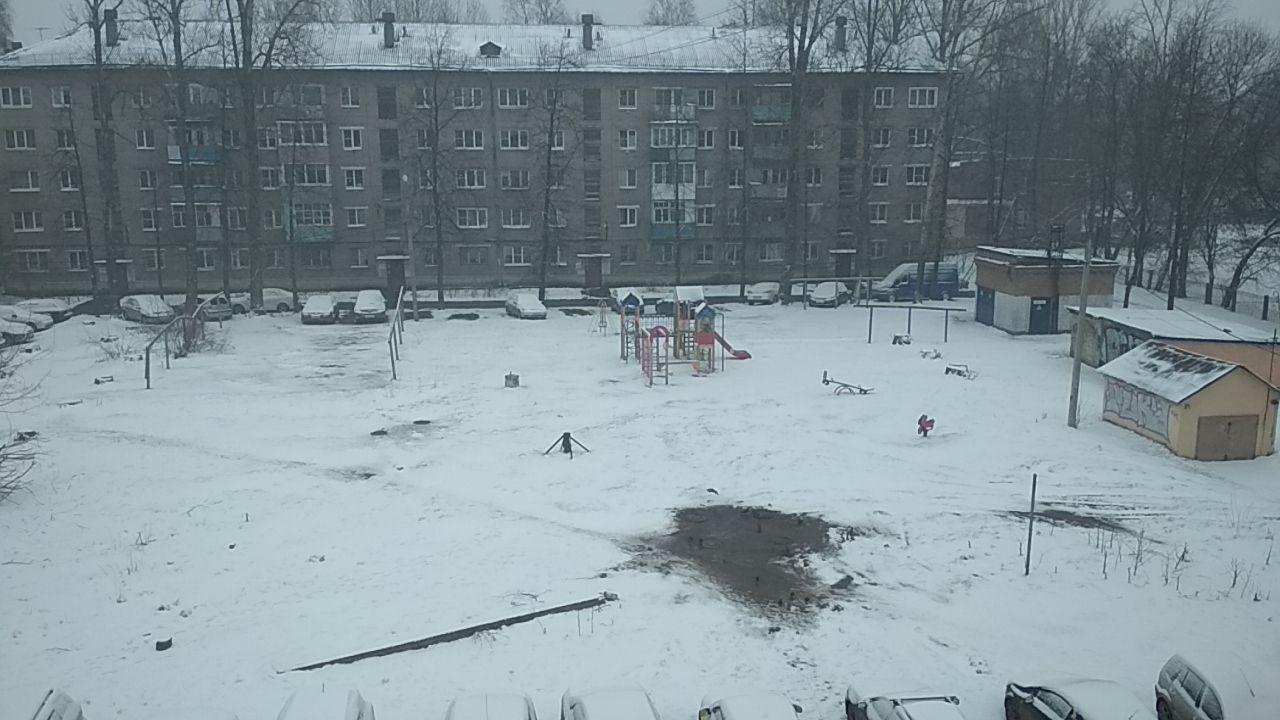 "Погода шепчет ""сиди дома"": Ярославль накрыло снегом"