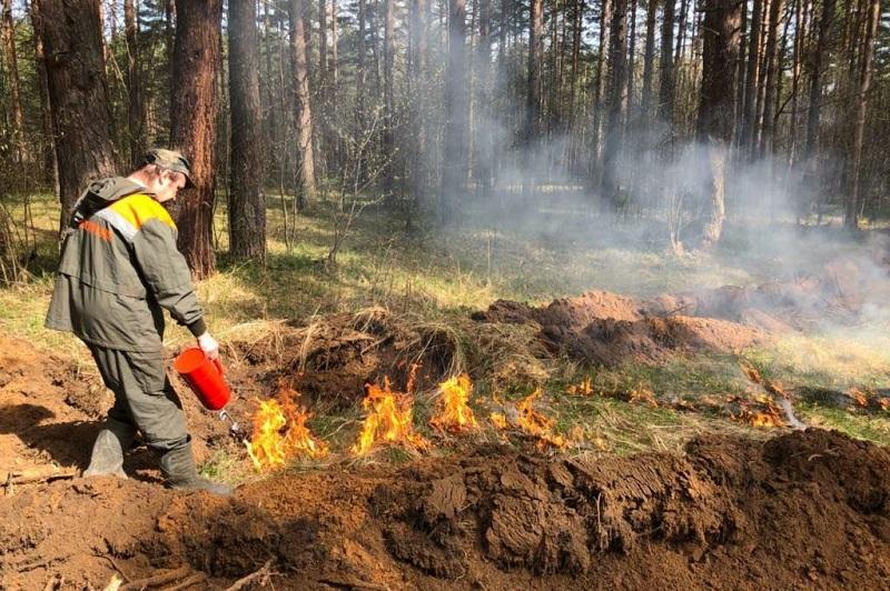 В регионе пожароопасный период объявлен на две недели раньше