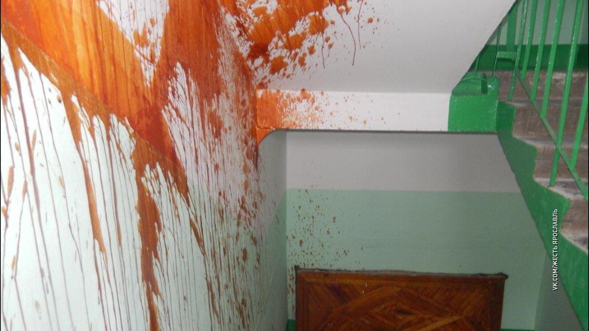 Вандалы облили краской только что отремонтированные стены в ярославской многоэтажке