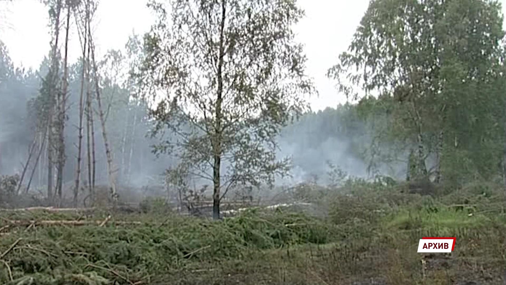Из-за аномально теплой зимы в регионе готовятся к сложному пожароопасному сезону