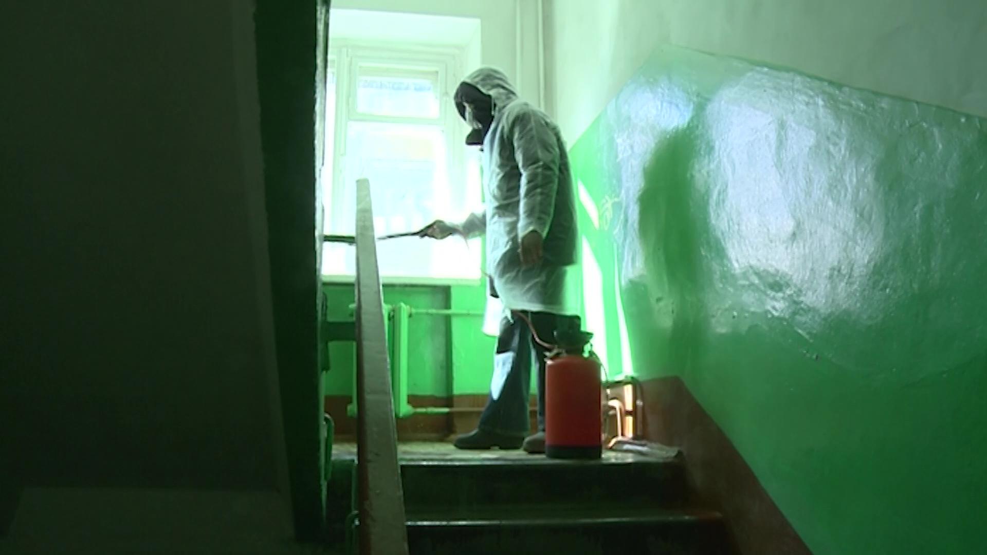 От дверей до кнопок лифта – в Ярославле продолжают дезинфицировать подъезды домов