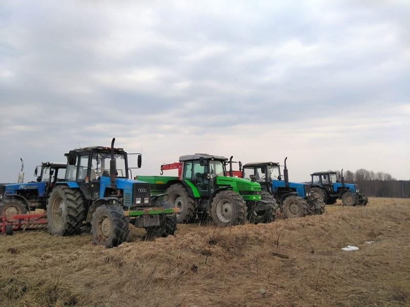 Посевная площадь в регионе в этом году составит почти 290 тысяч гектаров