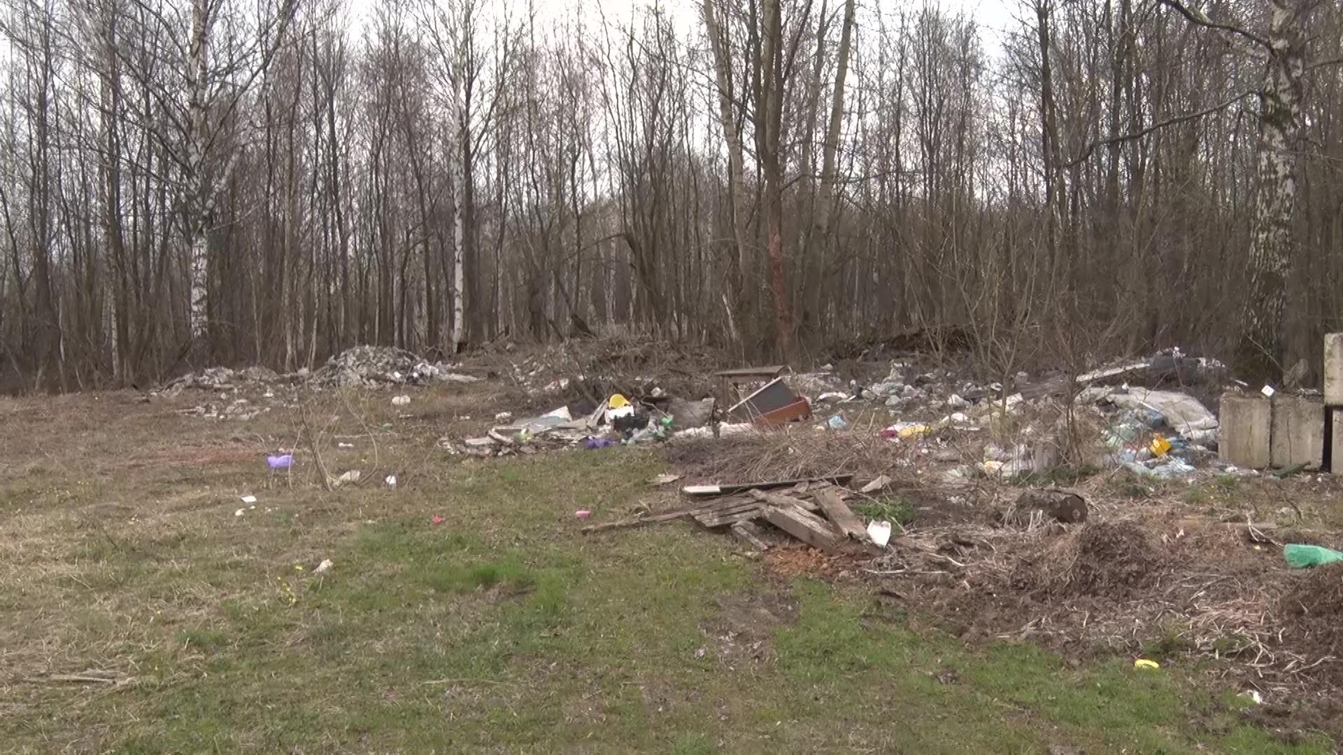 Свалка на берегу реки и отсутствие контейнеров: кто отвечает за мусорный «паводок» во Фрунзенском районе