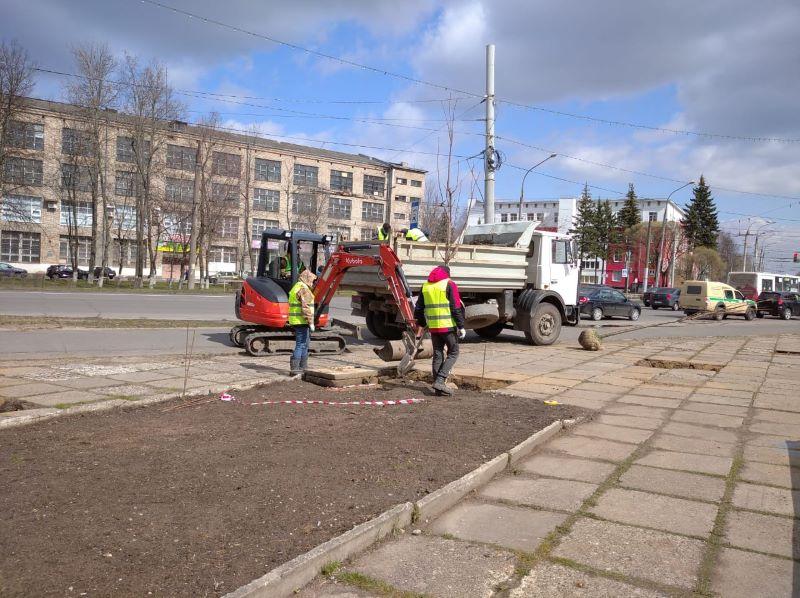 К юбилею Победы на площади имени маршала Жукова в Рыбинске высадили клены