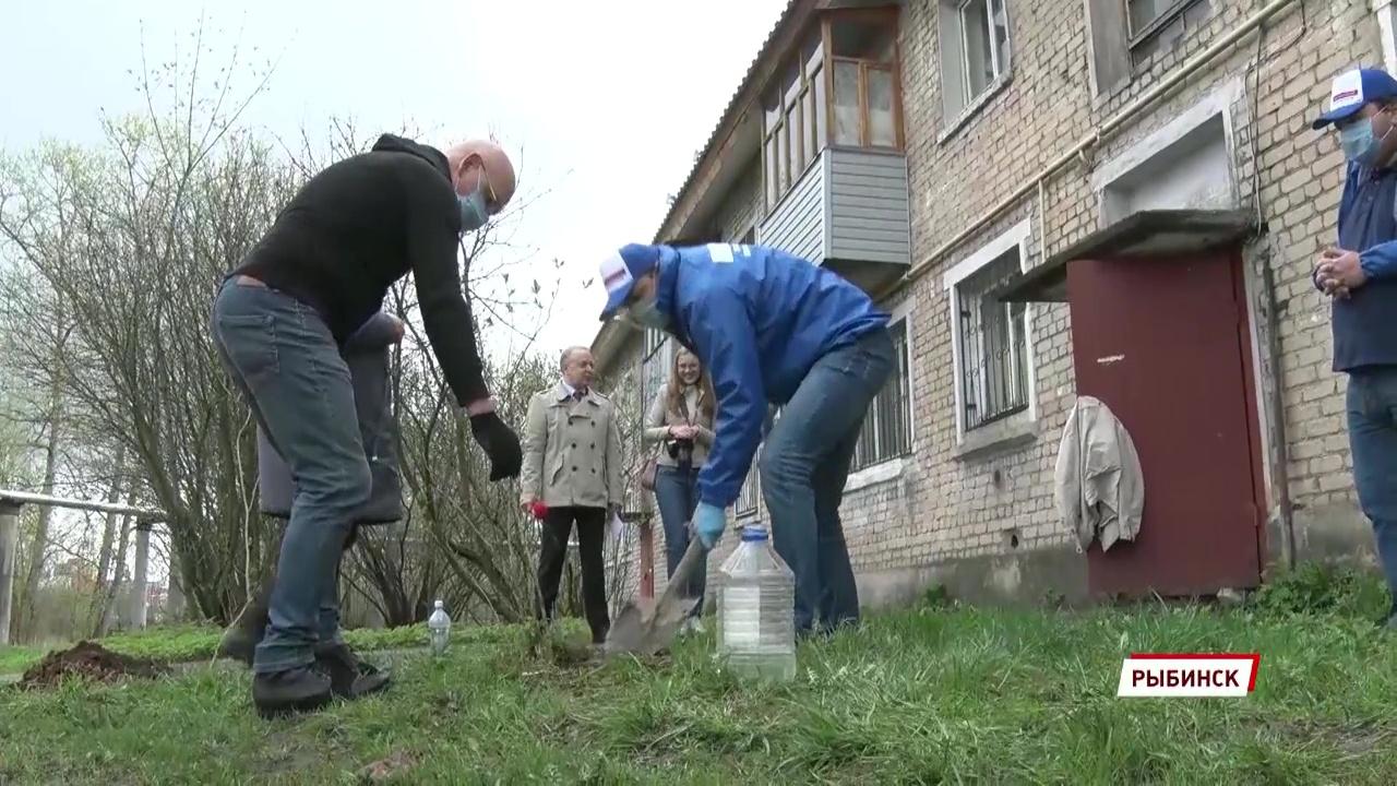 В Рыбинске волонтеры посадили кусты сирени под окнами ветерана