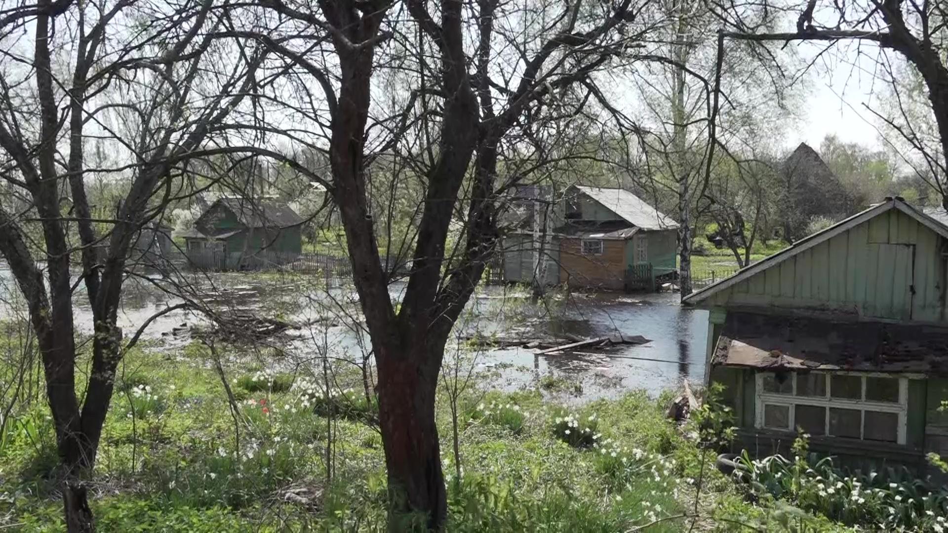 В Рыбинске и Ярославле затопило берега Волги: что произошло и как решили проблему