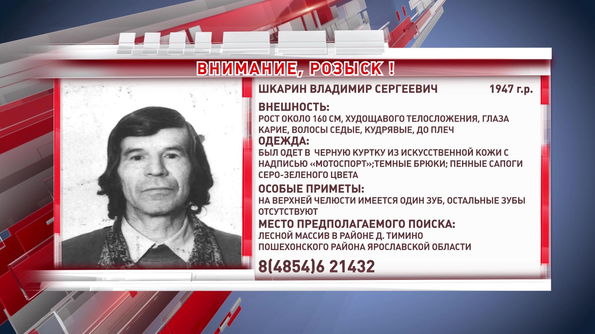 В Пошехонском районе ищут заблудившегося в лесу пенсионера