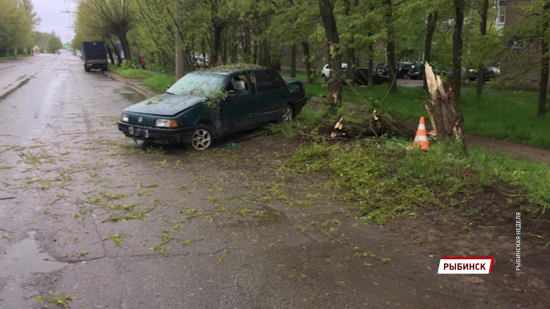 В Рыбинске водитель без прав протаранил дерево: погиб пассажир
