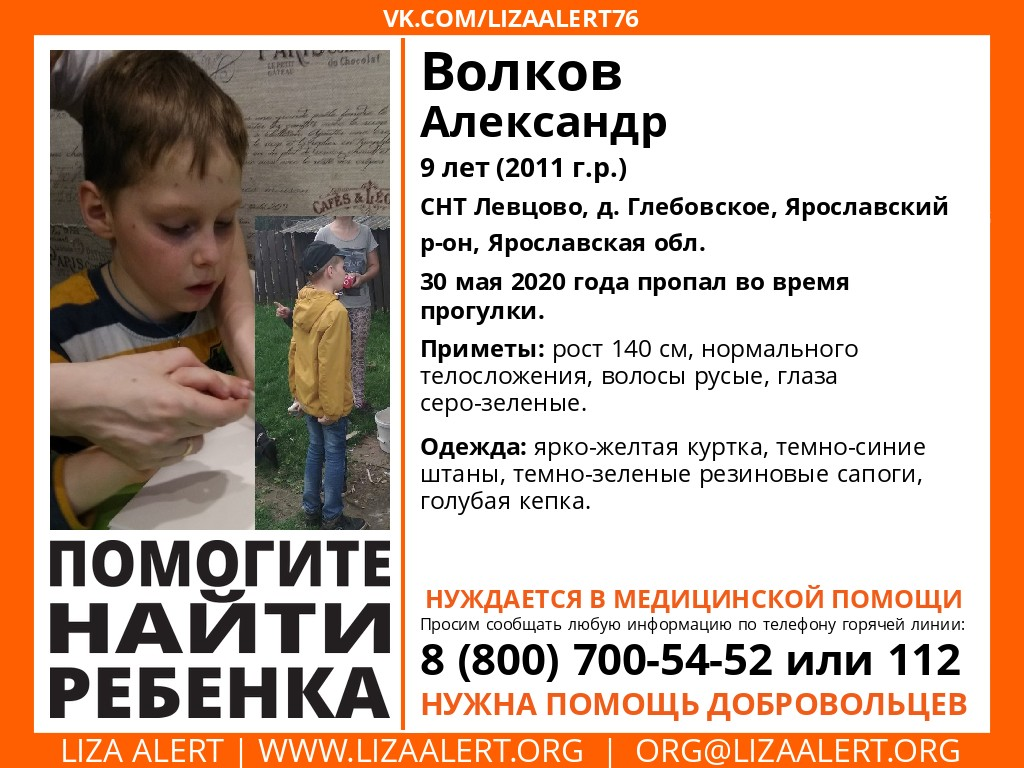 В Ярославском районе во время прогулки пропал девятилетний мальчик