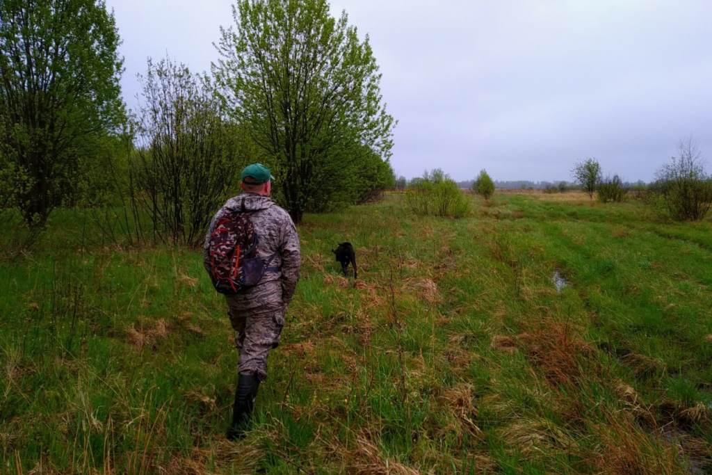 В Ярославской области с начала года провели более 1300 антибраконьерских рейдов