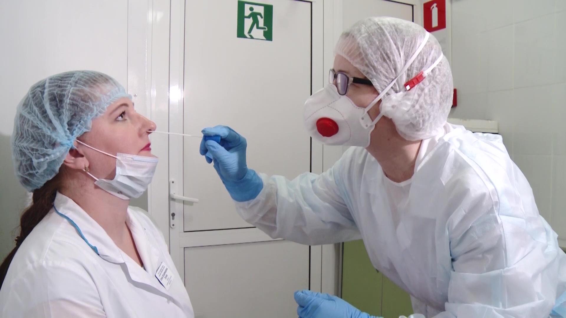 Более полутысячи ярославских студентов-медиков стали волонтерами