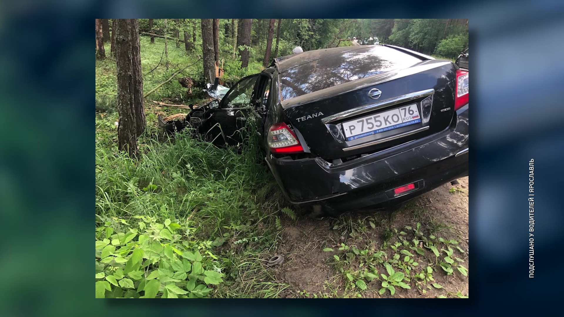 Иномарка «срубила» две сосны на дороге на Прусовские карьеры