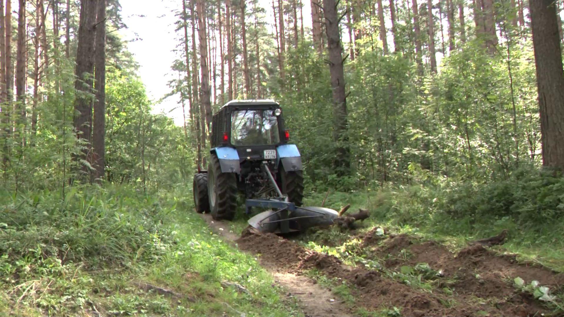 700 км минерализованных полос создано в Ярославской области для борьбы с лесными пожарами