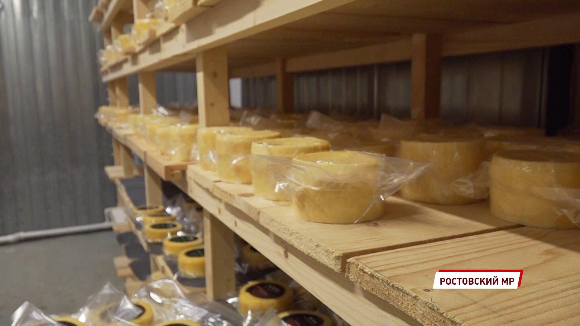Твёрдый, мягкий с плесенью и даже с углём: в Ростове пройдет ярмарка крафтовых сыров