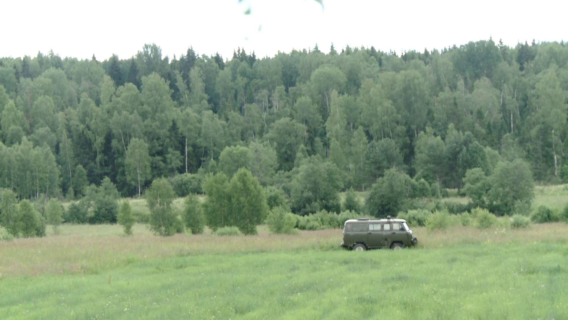 В Ярославской области идет уборка лесного фонда