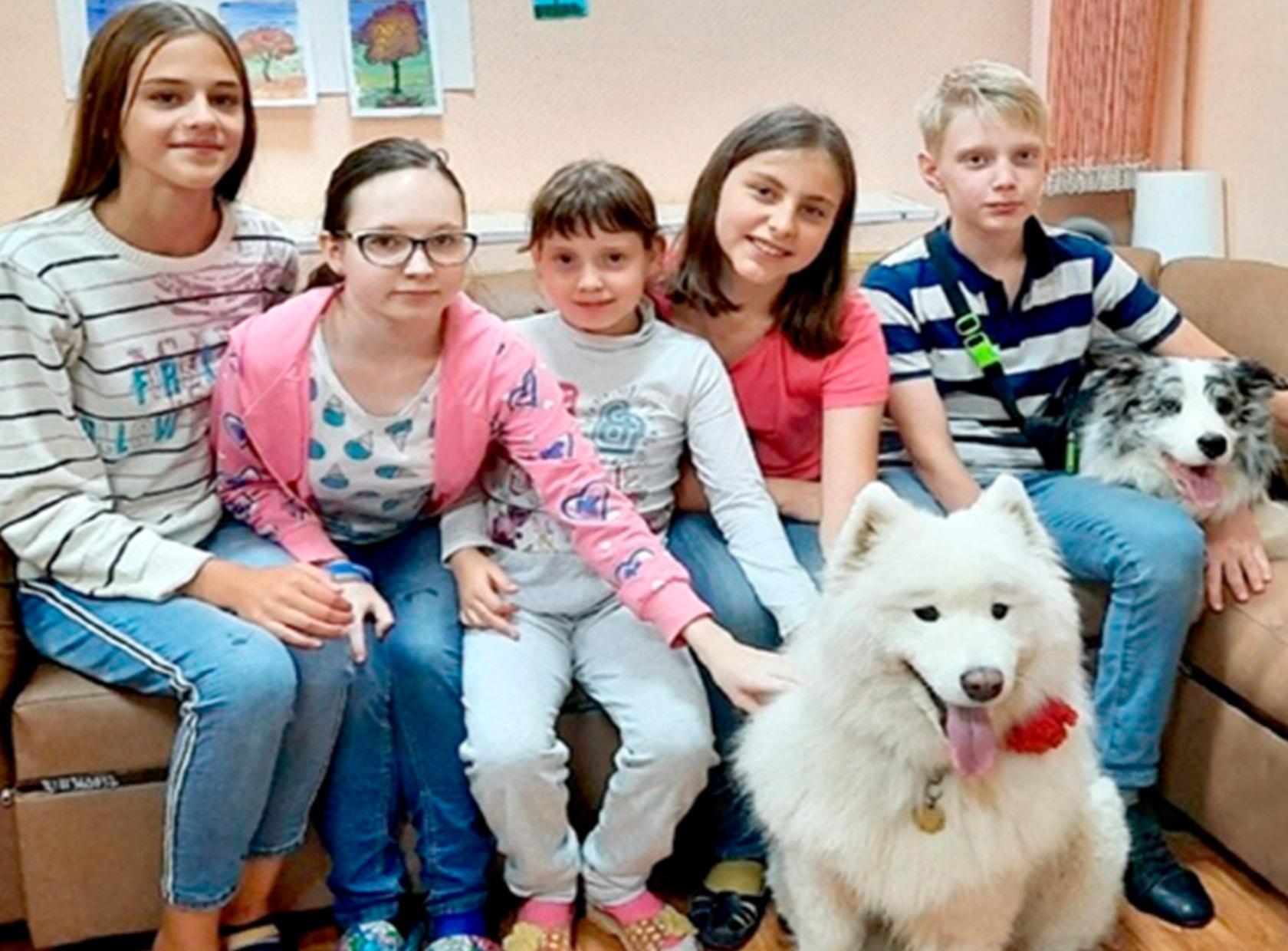 В Ярославле детям помогли собаки-терапевты