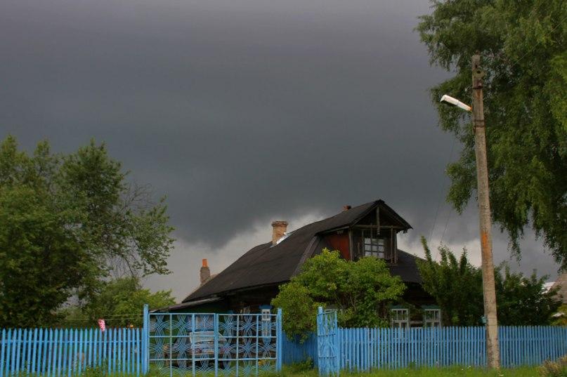 Ветер сохранится: МЧС продлило экстренное предупреждение для ярославцев