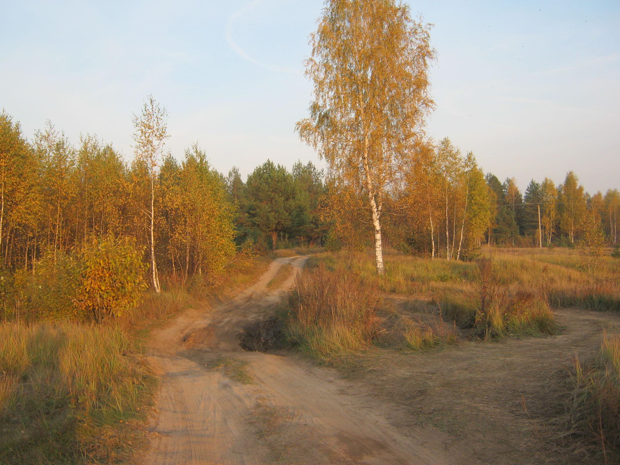 Жителей Центральной России ждет классическое бабье лето