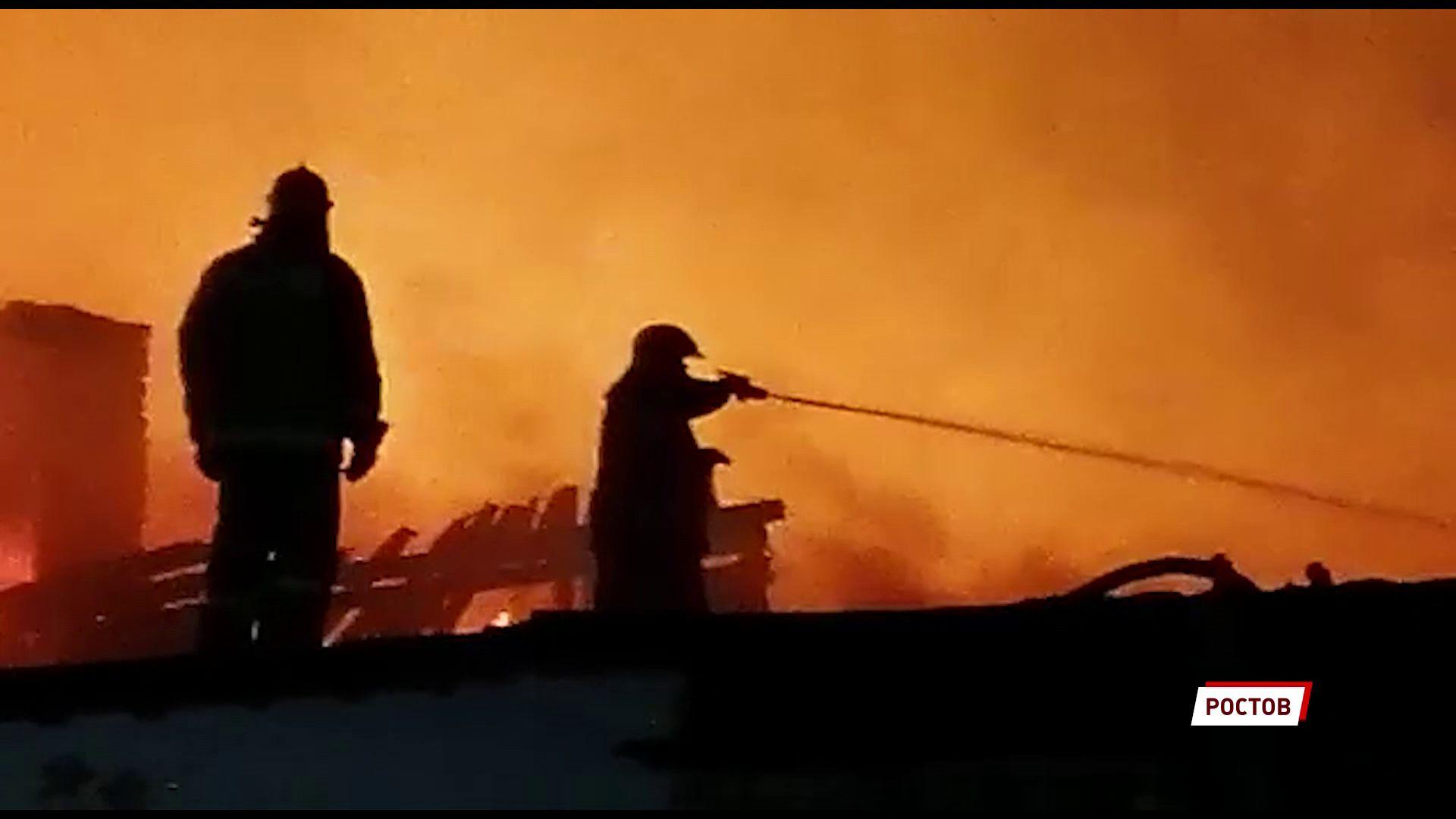 Из пожара в Ростове Великом спасли животных