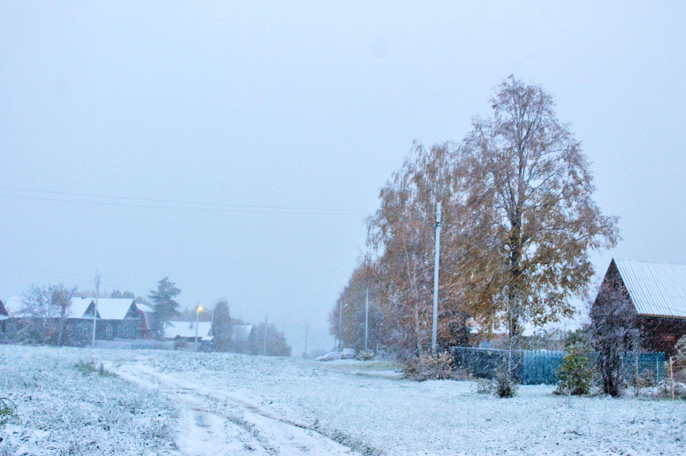 Из сентября в ноябрь: в предстоящие выходные в Ярославской области ждут снегопады