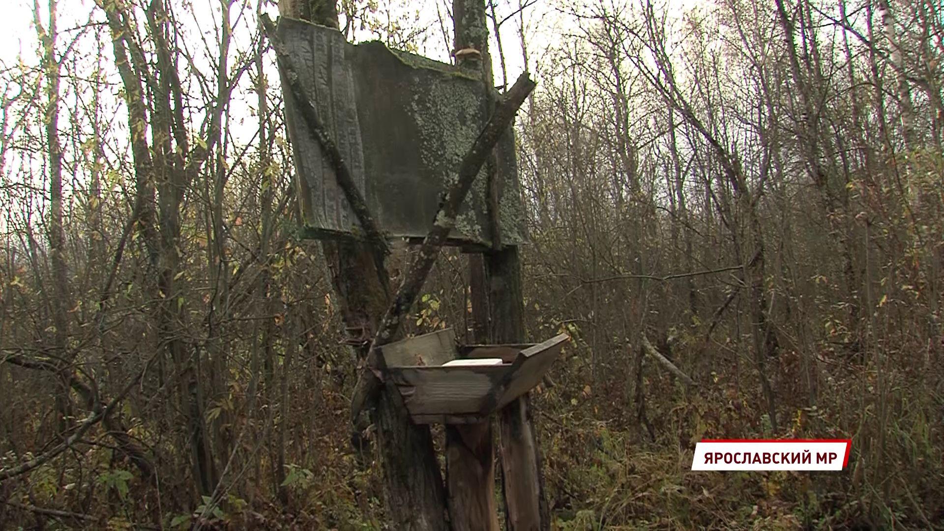 В Ярославской области ловят браконьеров
