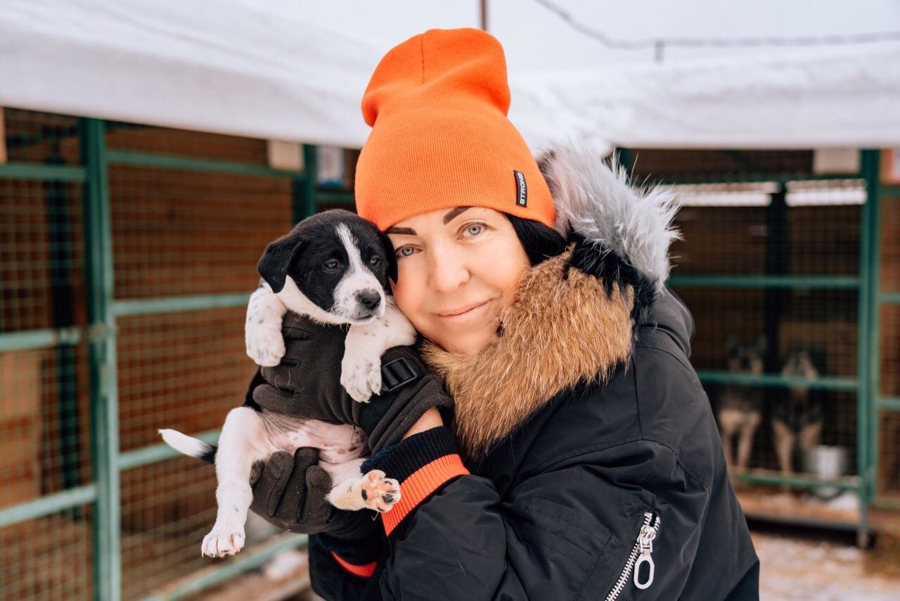 В Ярославле животных из приюта раздадут в добрые руки