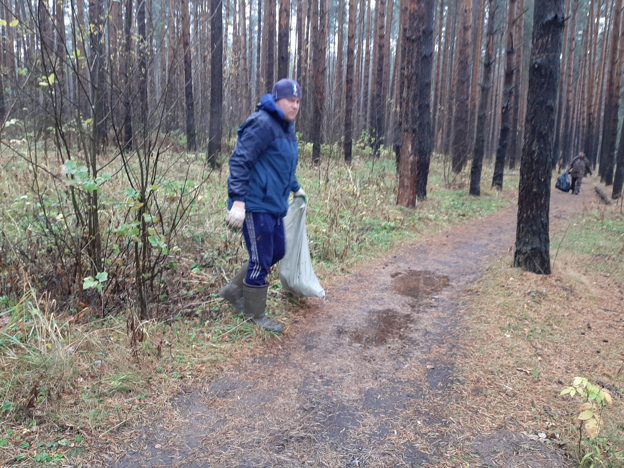С начала года из лесов Ярославской области вывезли около 870 кубометров мусора