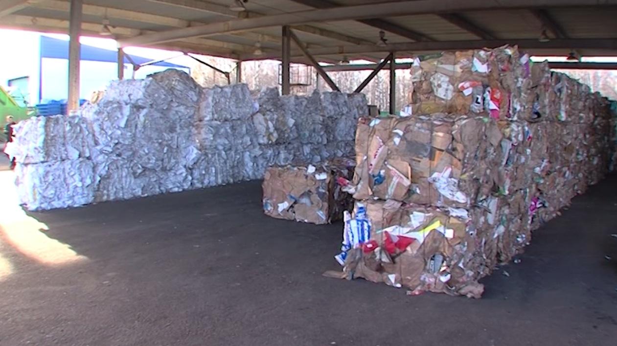 Ярославец убил сожительницу и выбросил тело в мусорный контейнер