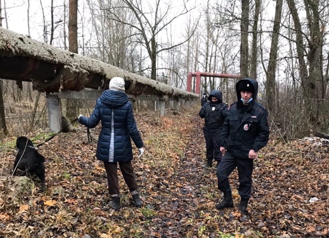 В Ярославле полицейские и волонтеры спасли от смерти привязанного в лесополосе лабрадора