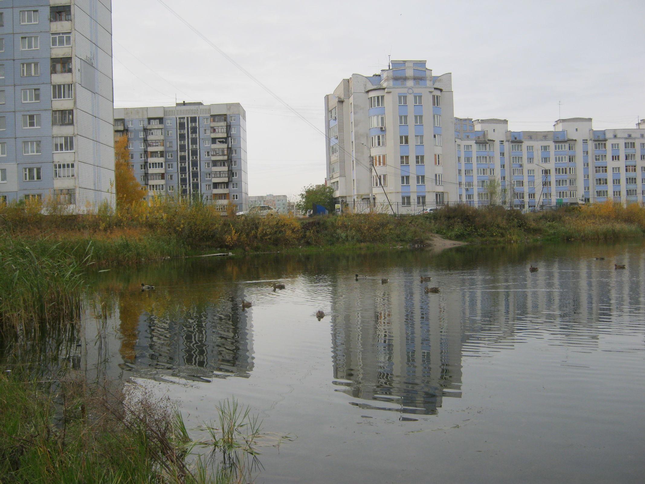 Нуждается в медпомощи: в Ярославле разыскивают 63-летнюю женщину