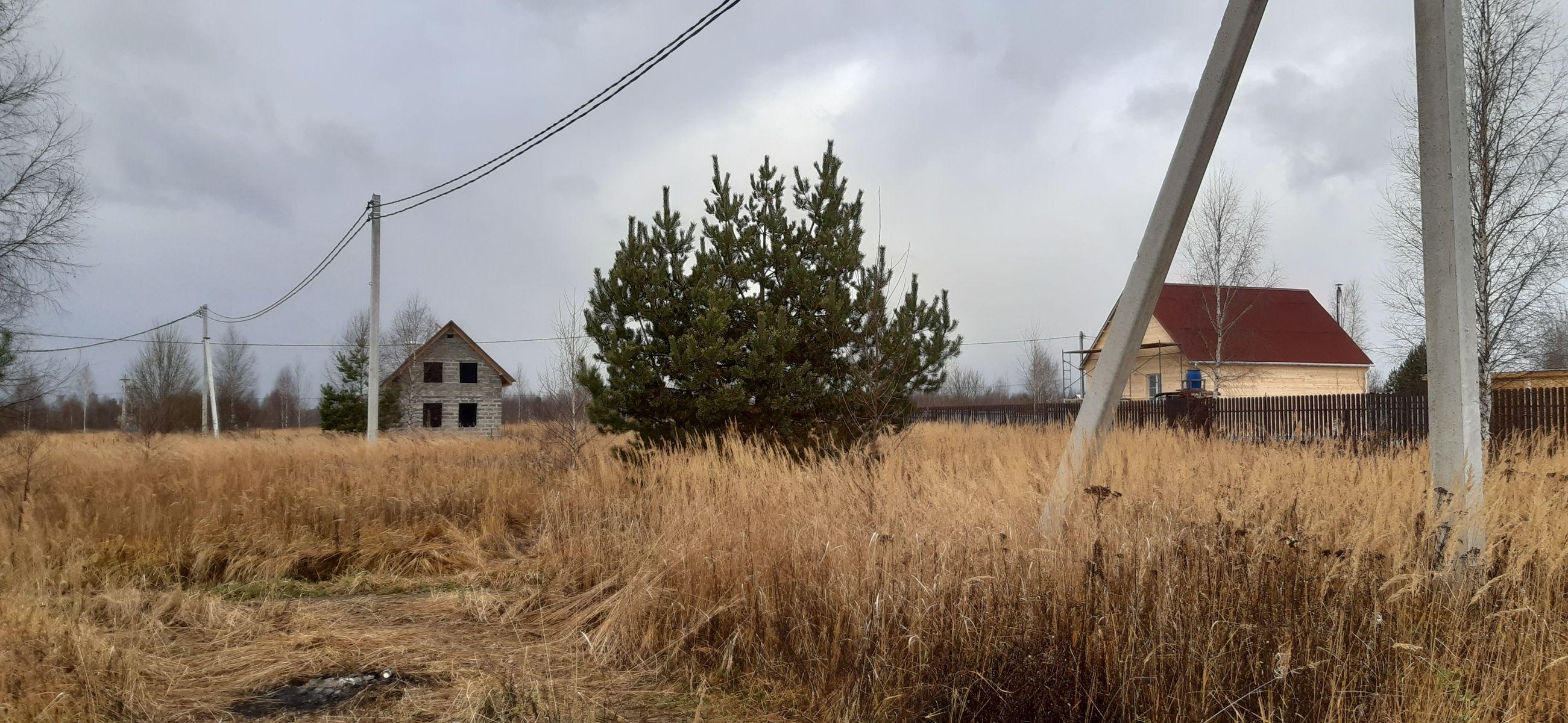 Более 750 земельных участков было предоставлено в этом году в Ярославской области молодым и многодетным семьям