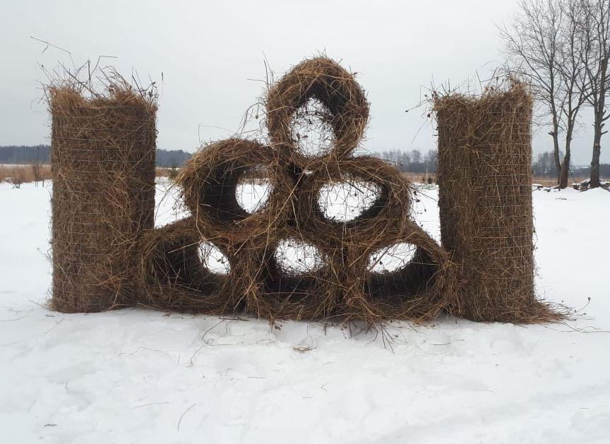 В Ярославской области обустроят 50 искусственных гнездовий для уток