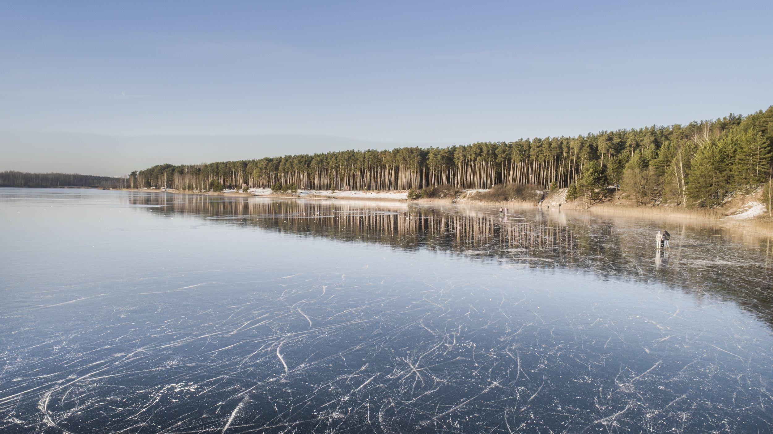 Лесопарковая зона Ярославля превысит 1 100 гектаров