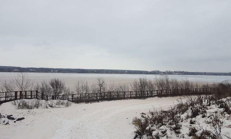 Природу происхождения налета и неприятного запаха на Волге в Дзержинском районе изучат в Росприроднадзоре