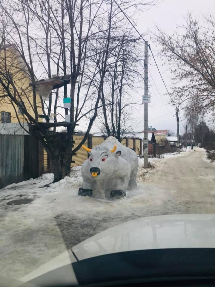 Шикарный символ наступающего года появился в Дзержинском районе