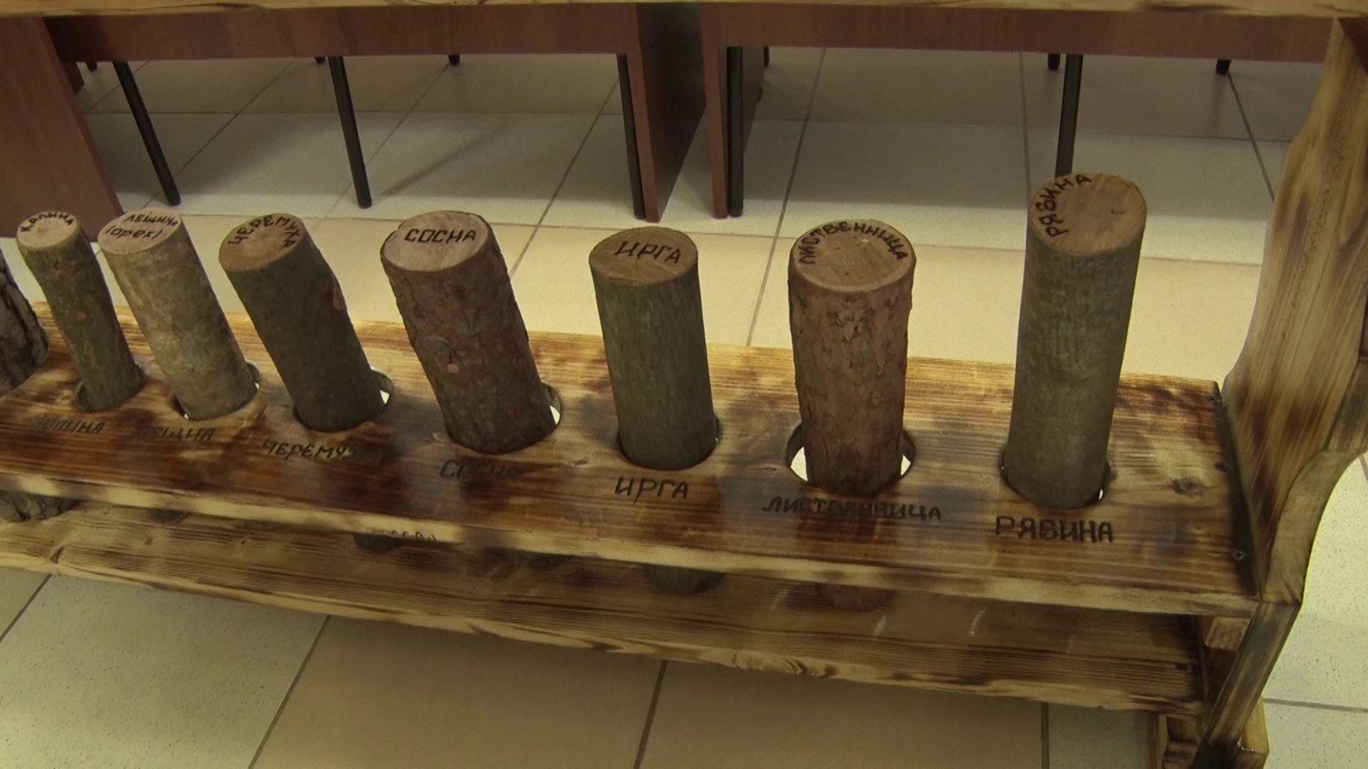 В Ярославской библиотеке для незрячих и слабовидящих установили макеты деревьев