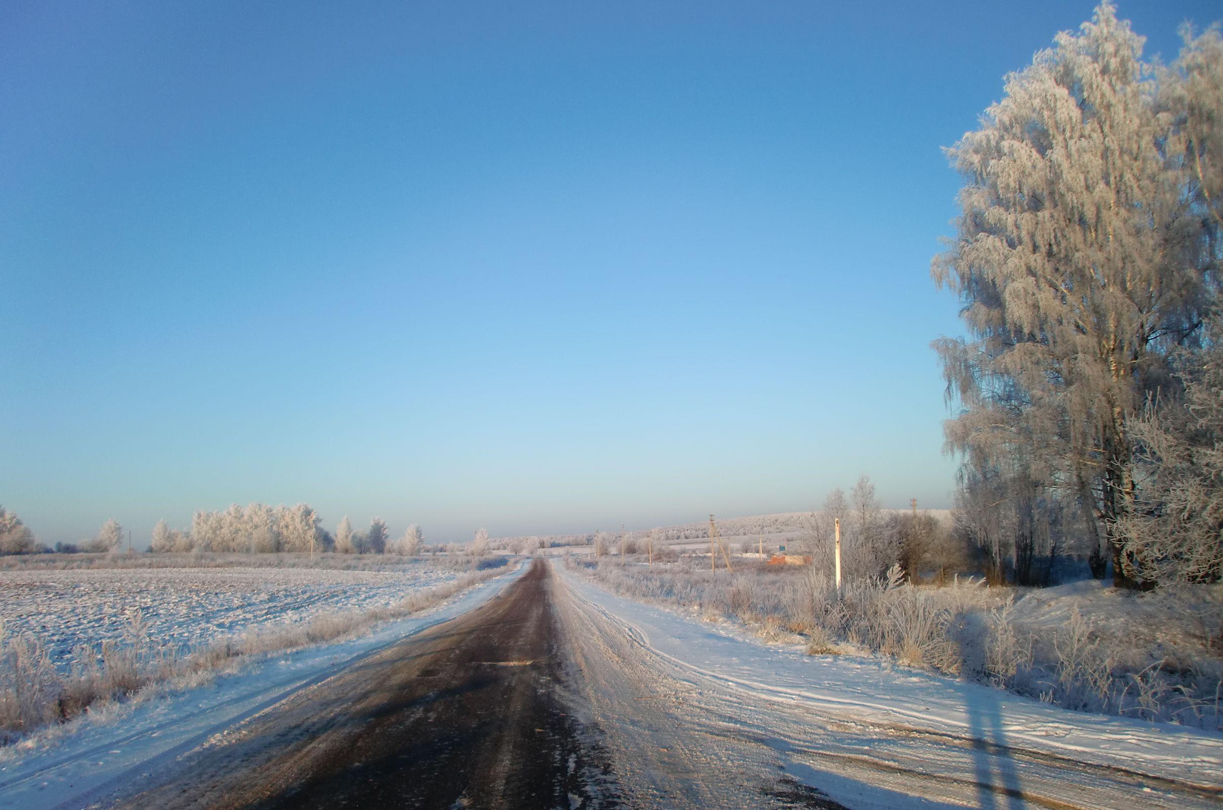 Настоящая русская зима: метели в Ярославле сменятся очередным витком похолодания