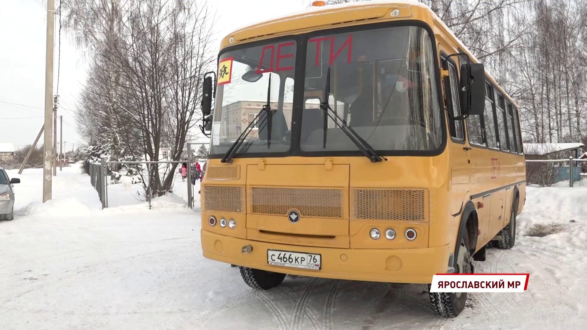На ярославские дороги вышли новые школьные автобусы