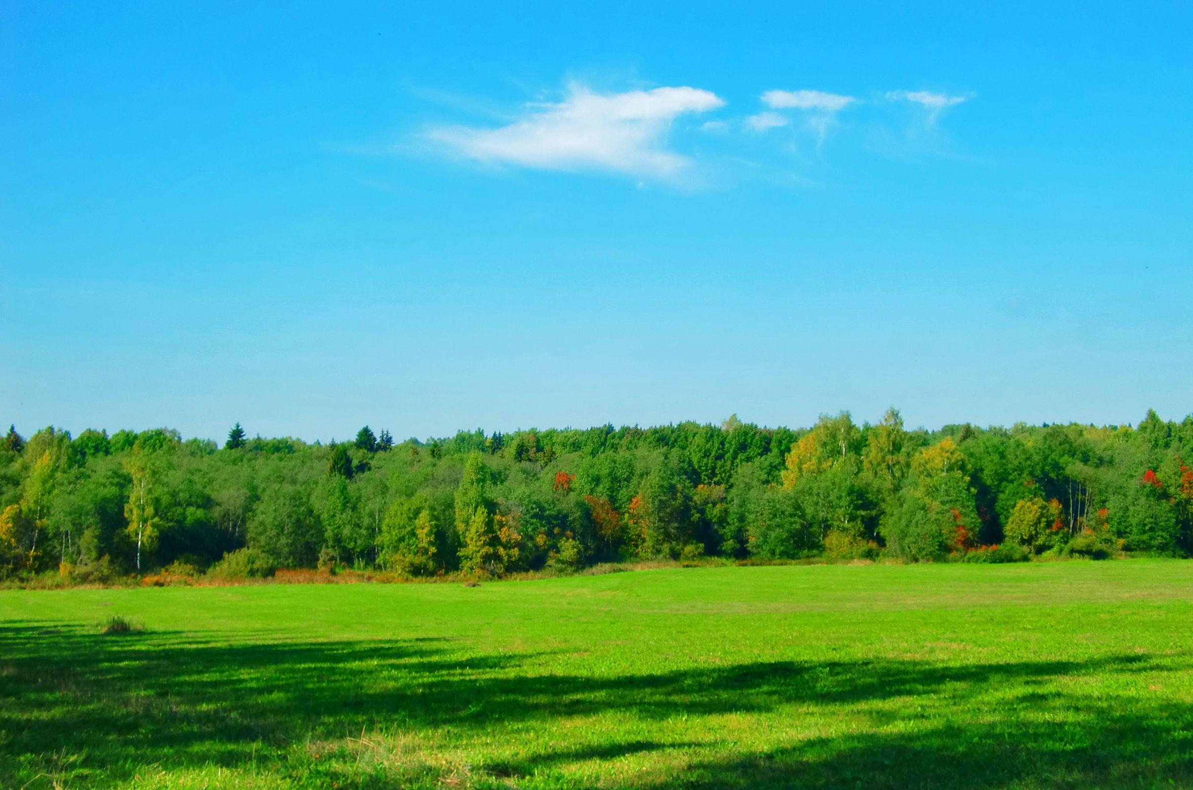 Более 250 мероприятий по экологическому просвещению детей и взрослых прошло в Ярославской области за год