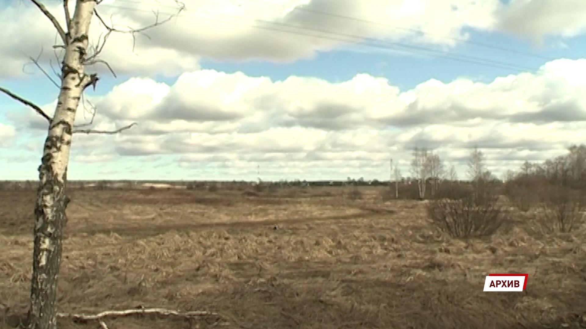 Ярославским аграриям в 2020 году удалось на 14% перевыполнить прогнозный план