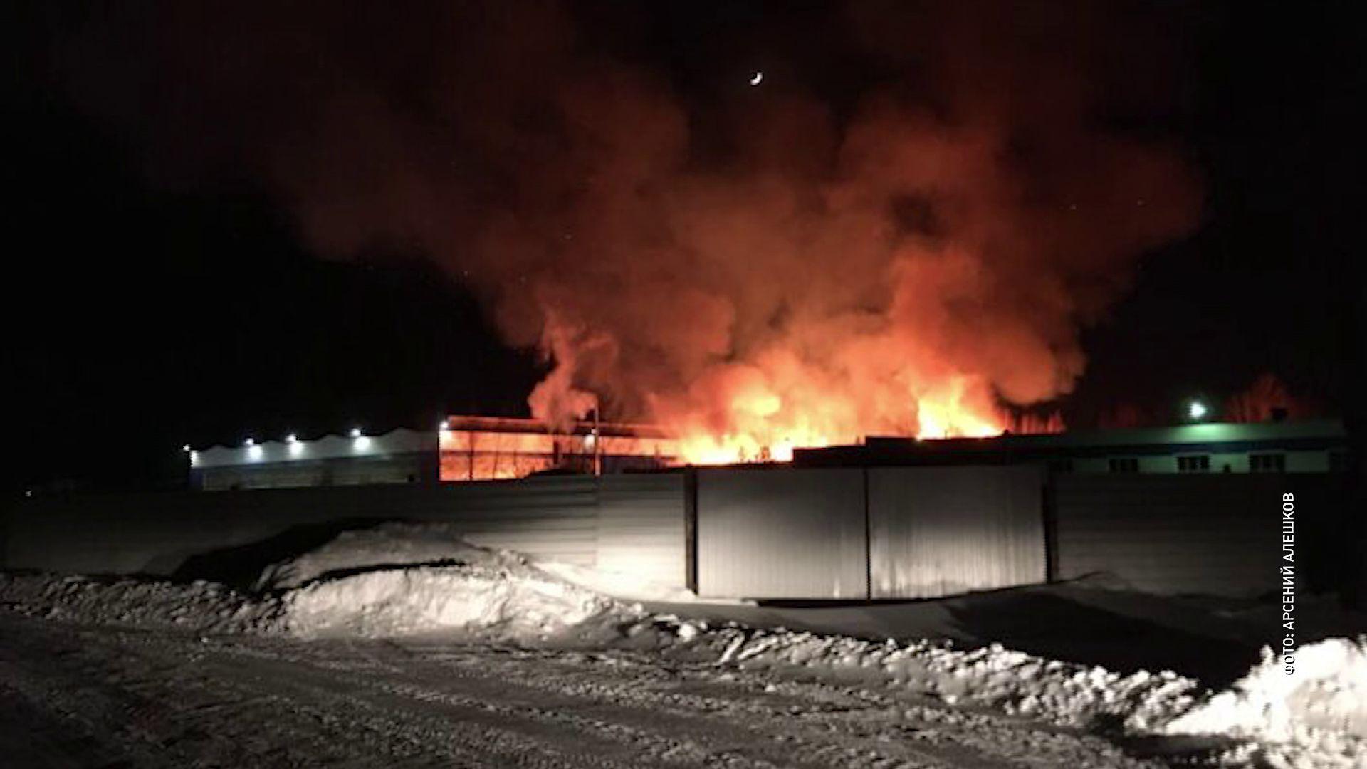 В Рыбинске сгорела пилорама