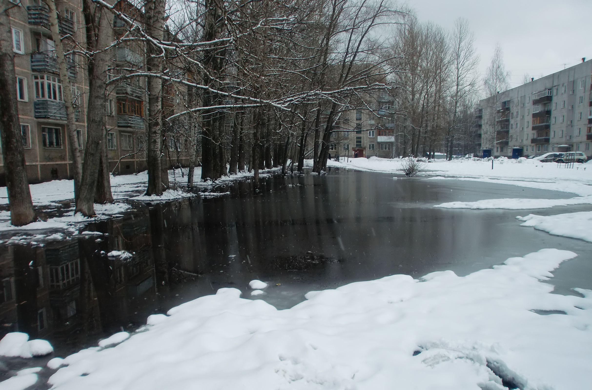 Сильный снег, дожди и гололедица: погоду в Центральной России продолжит лихорадить